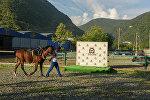 Детско-спортивная конная школа Леон