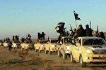 Би-би-си: боевики ИГ могут производить иприт самостоятельно