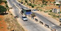 Контрольно-пропускной пункт в городе Идлиб, Сирия