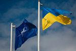 Флаг Украины и НАТО. Архивное фото