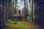 Домик в лесу в Финляндии