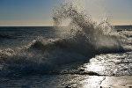 Волны на побережье Черного моря