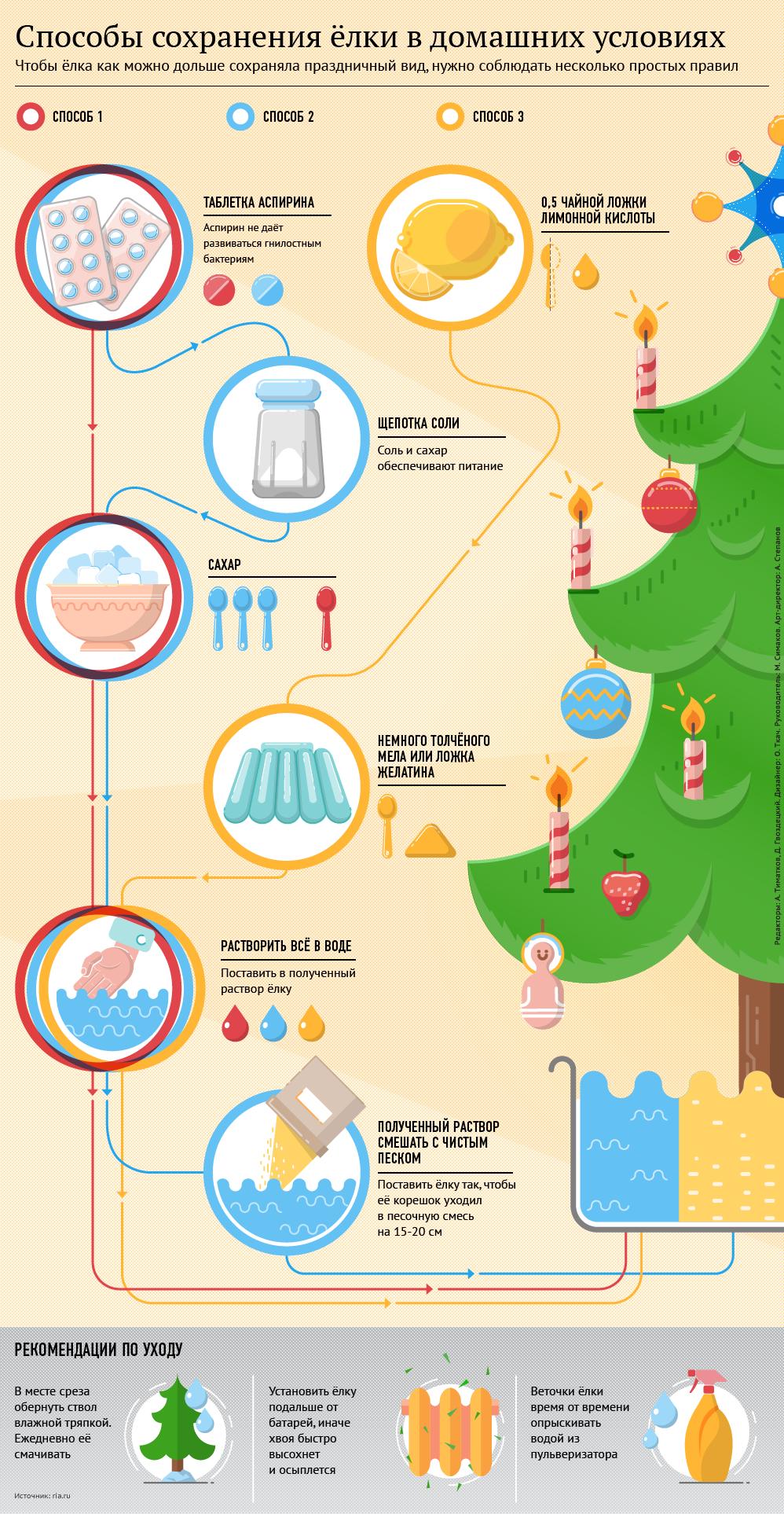 Способы сохранения елки