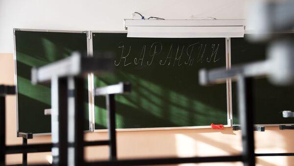 В школах Забайкалья прекращены занятия после выявления в регионе коронавируса - Sputnik Аҧсны