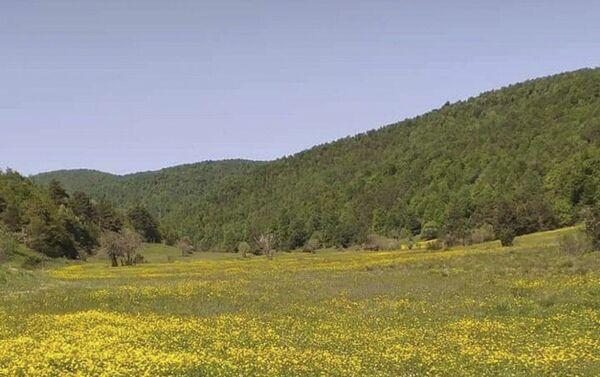 Абхазское село Арасадзыхь в Турции - Sputnik Аҧсны