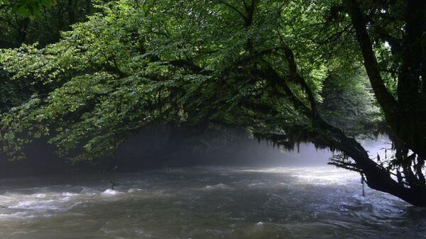 Туман над рекой  - Sputnik Абхазия