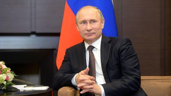 Двусторонняя встреча президента РФ В. Путина с президентом Индонезии Джоко Видодо - Sputnik Абхазия