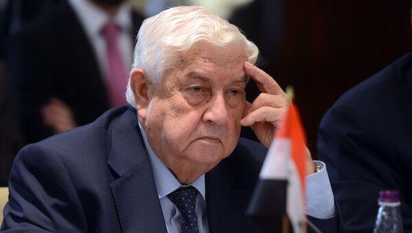 10-е заседание российско-сирийской комиссии - Sputnik Аҧсны