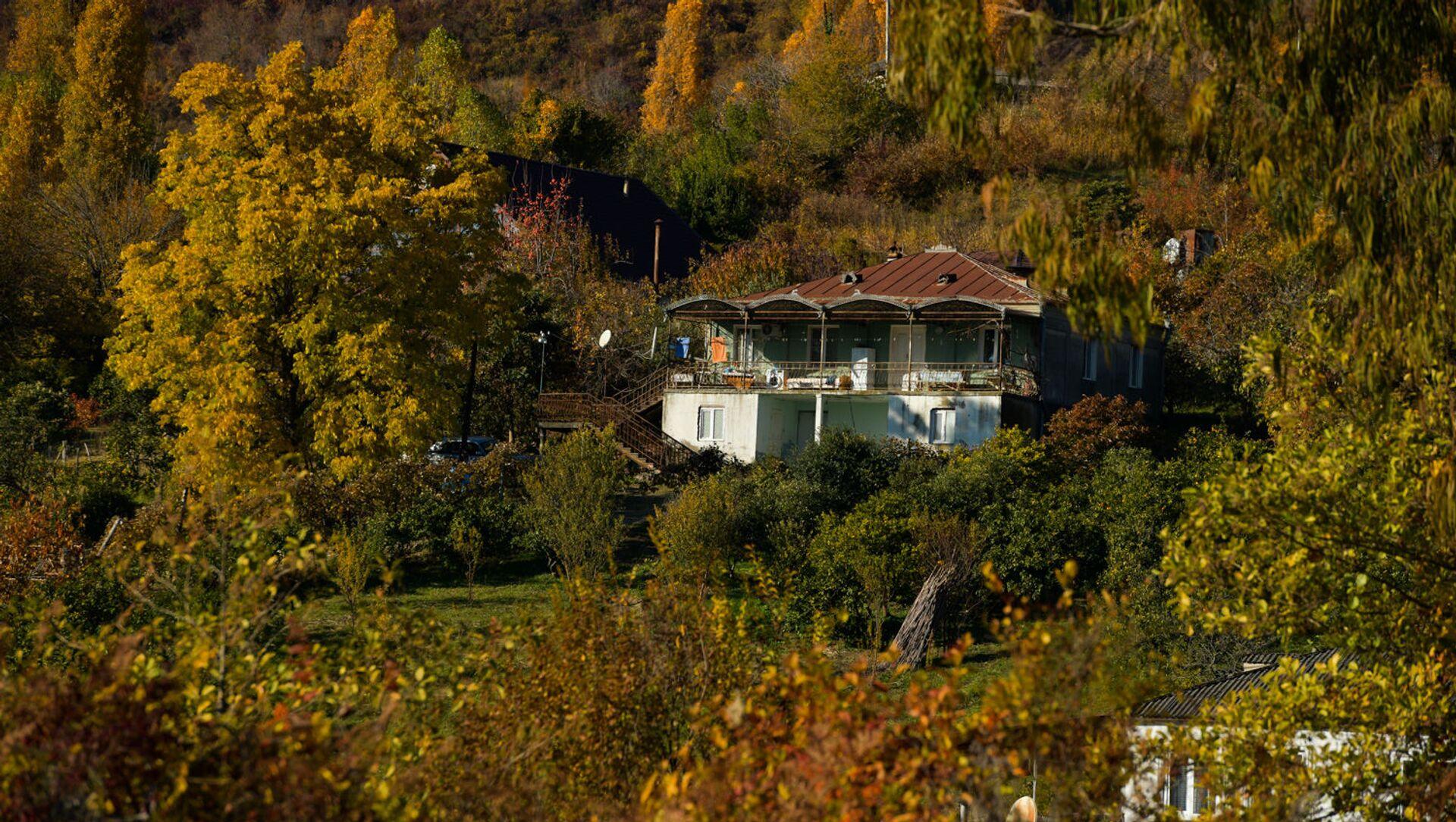 Осень в Абхазии  - Sputnik Аҧсны, 1920, 30.07.2021