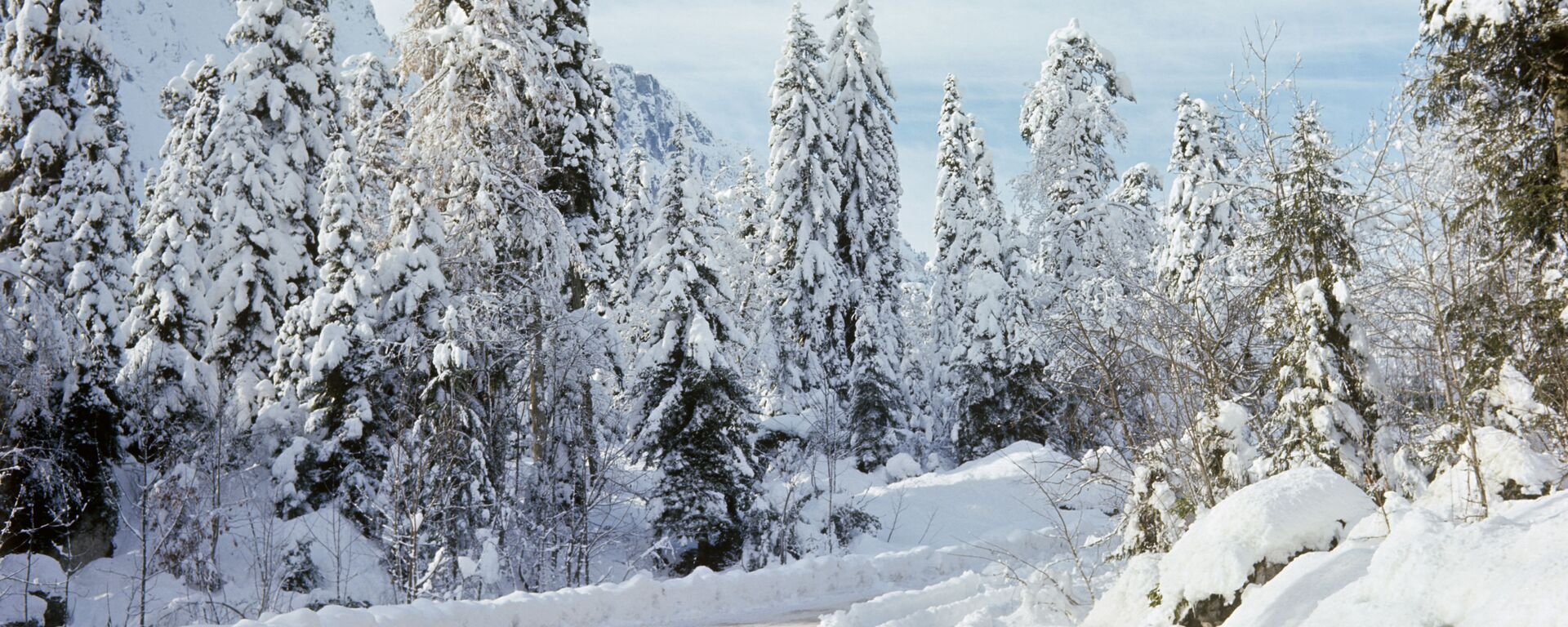 Дорога на озеро Рица зимой. - Sputnik Аҧсны, 1920, 08.01.2021