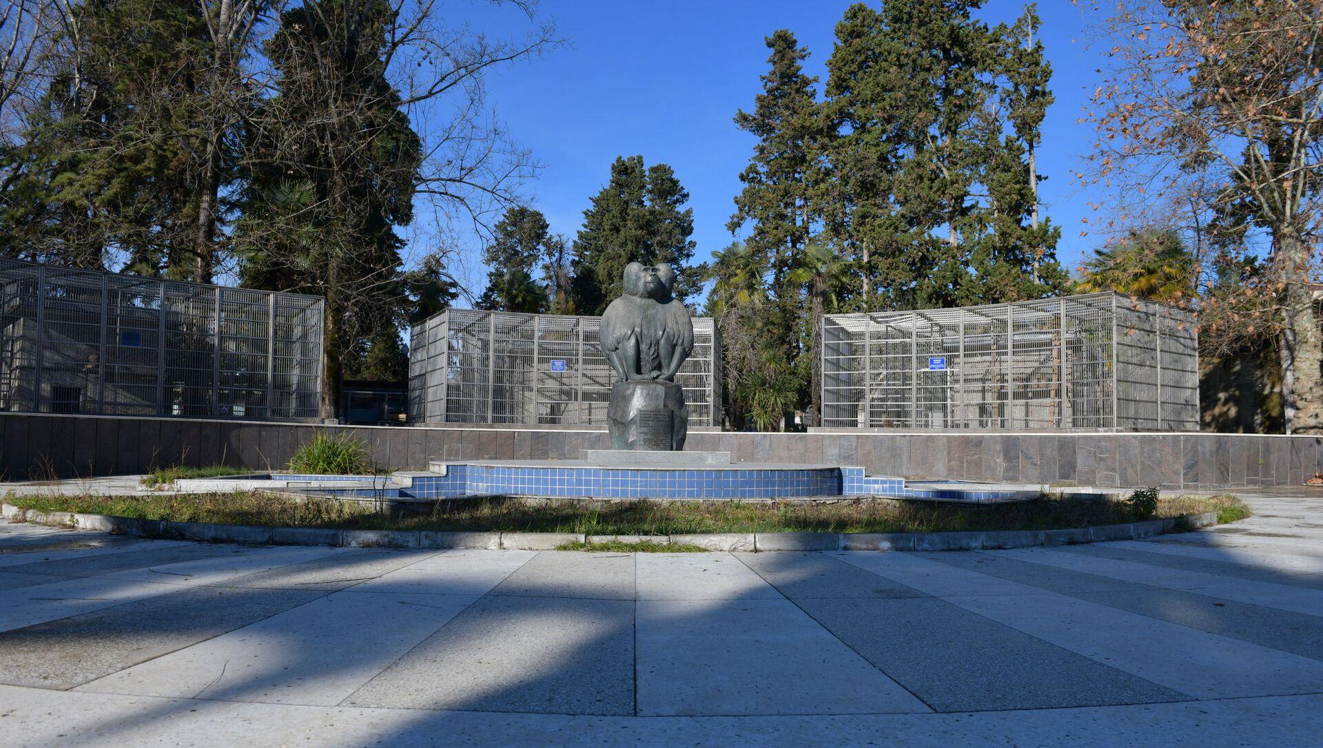 Памятник обезьяне на территории Сухумского питомника обезьян - Sputnik Абхазия, 1920, 25.07.2021