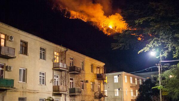 Лесные пожары в Гагре приблизились к жилым домам - Sputnik Абхазия