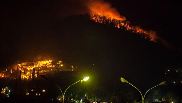Лесные пожары в Гагре - Sputnik Аҧсны