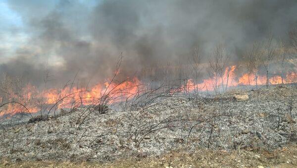 В окрестностях сел Кындыг и Баслаху ликвидировали природные пожары на площади в 11 гектаров - Sputnik Аҧсны
