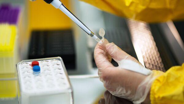 В России зарегистрирована первая в мире вакцина против COVID-19 для животных - Sputnik Абхазия