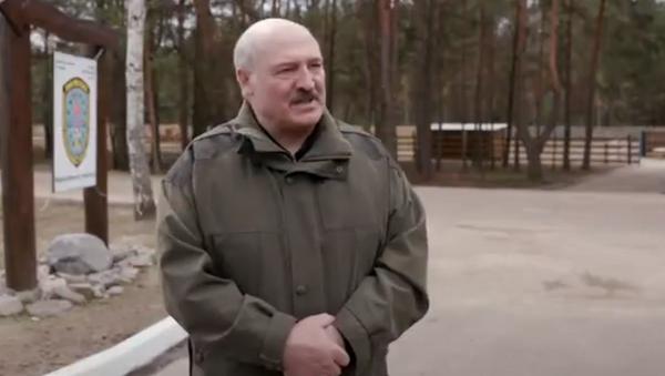 Лукашенко о передаче власти в экстренной ситуации - Sputnik Абхазия