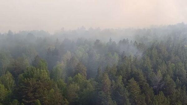 Тушение лесных пожаров в Тюменской области - Sputnik Абхазия