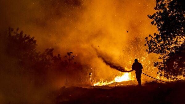 Пожарный борется с пламенем в лесу на склонах горной цепи Троодос, в то время как гигантский пожар бушует на Кипре - Sputnik Абхазия