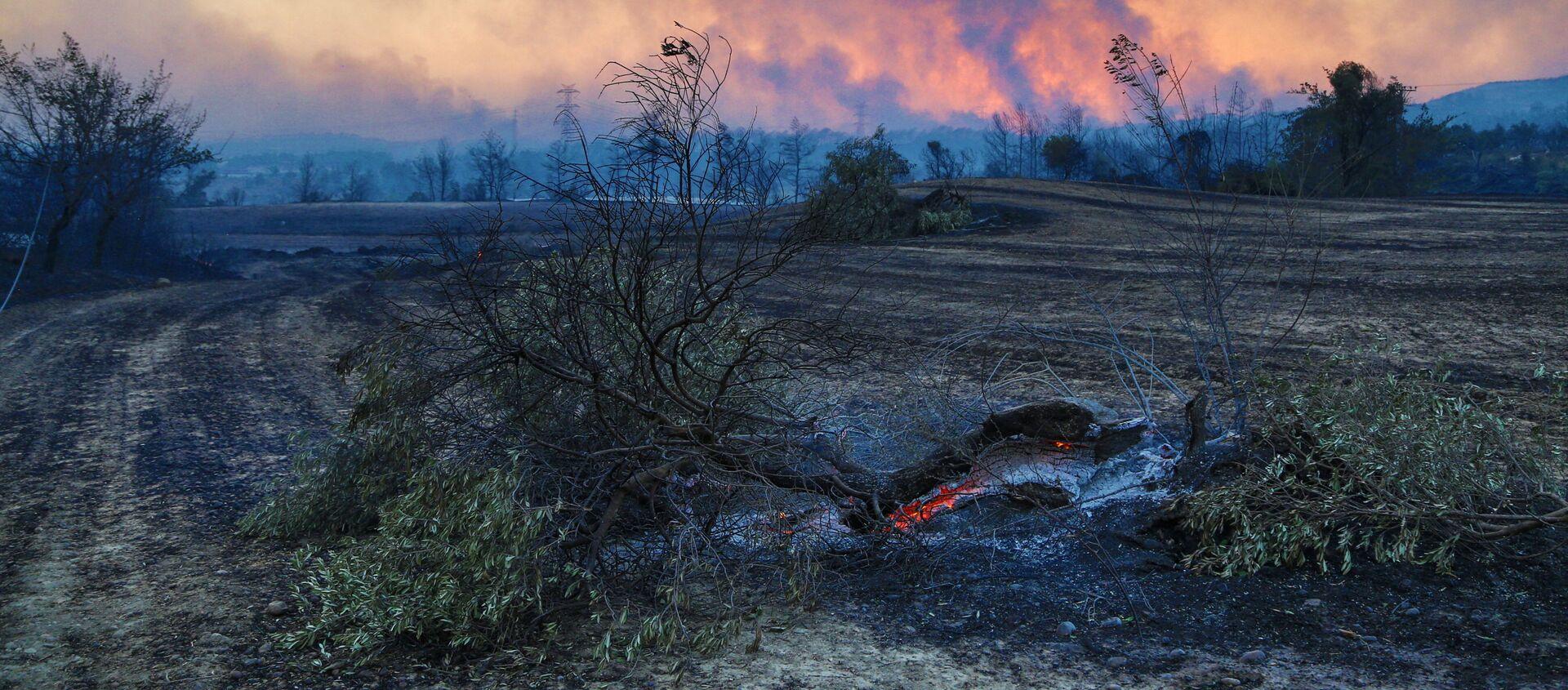 Лесной пожар в Турции - Sputnik Абхазия, 1920, 30.07.2021