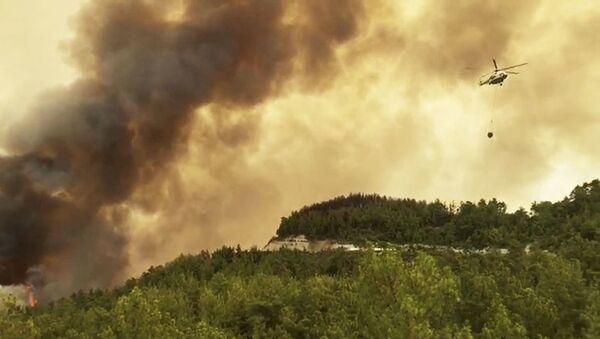 Пожары в Турции - Sputnik Абхазия