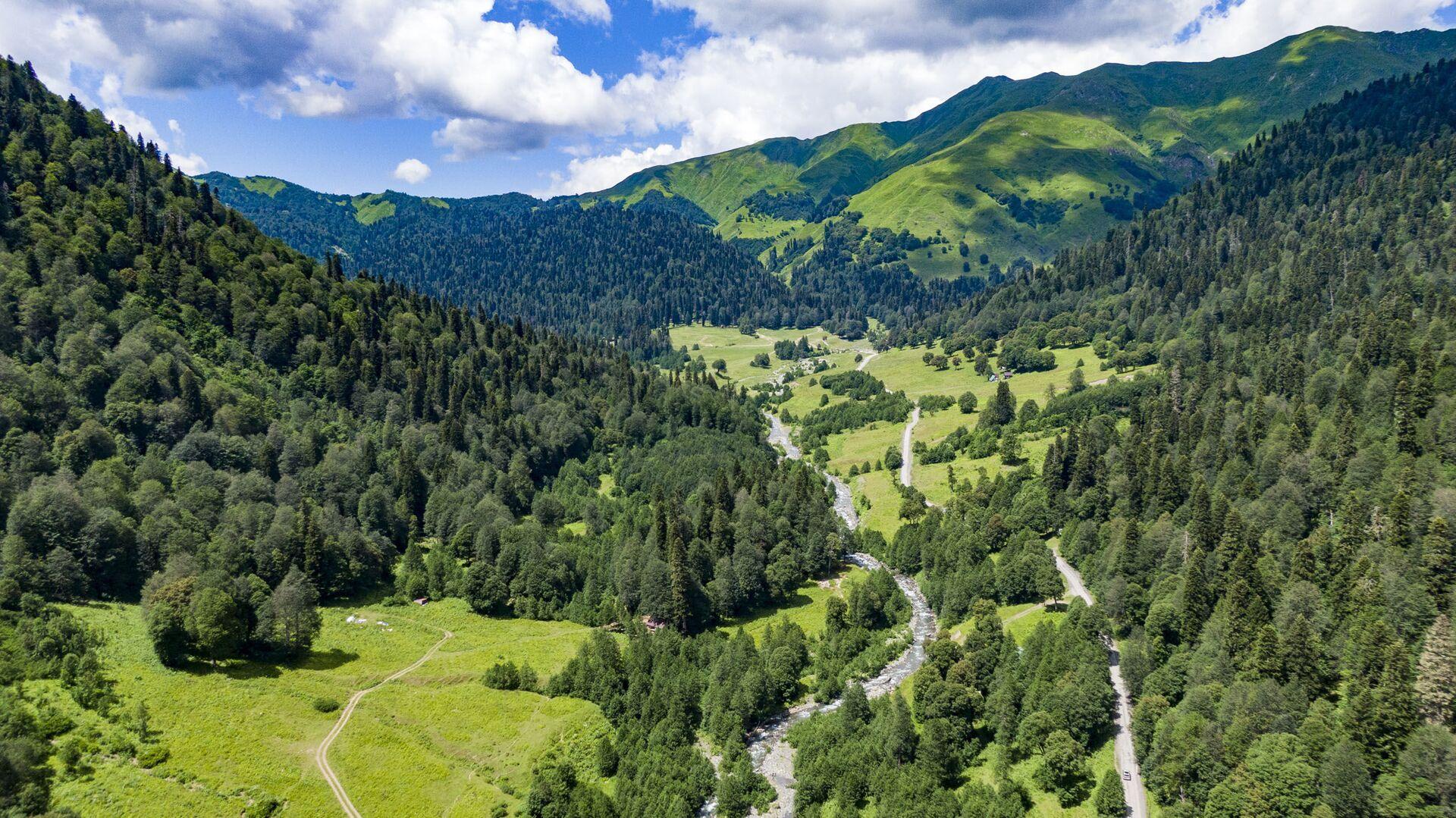 Альпийские луга  - Sputnik Абхазия, 1920, 29.09.2021