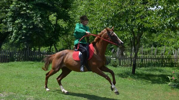 Любовь и лошади Отара Чанба: как житель Лыхны возводит апацхи и воспитывает скакунов  - Sputnik Абхазия