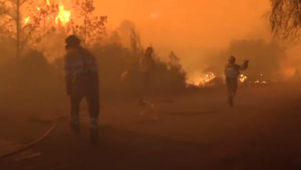 Испания: Сотни пожарных пытаются справиться с огнем в Азуебаре после того, как сгорели 500 гектаров - Sputnik Абхазия