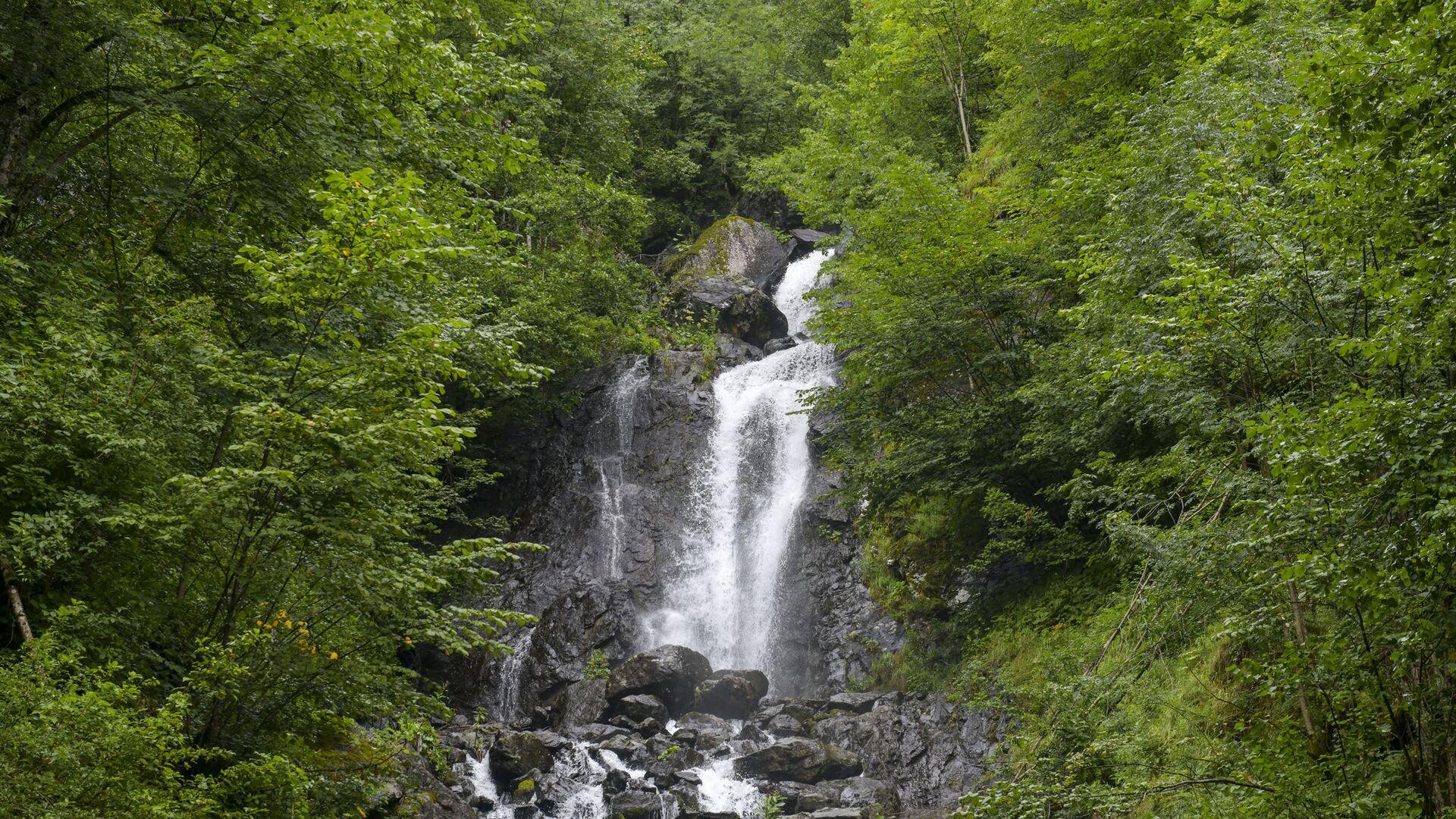 Рицинский реликтовый национальный парк Абхазии - Sputnik Абхазия, 1920, 23.09.2021