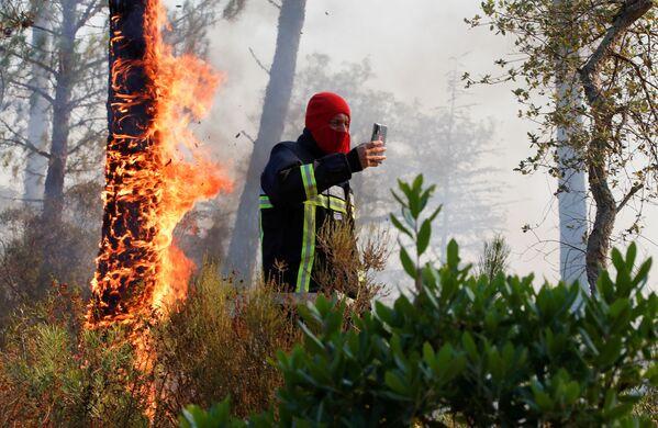 Пожарный фотографируется напротив горящего дерева во французском департаменте Вар  - Sputnik Абхазия