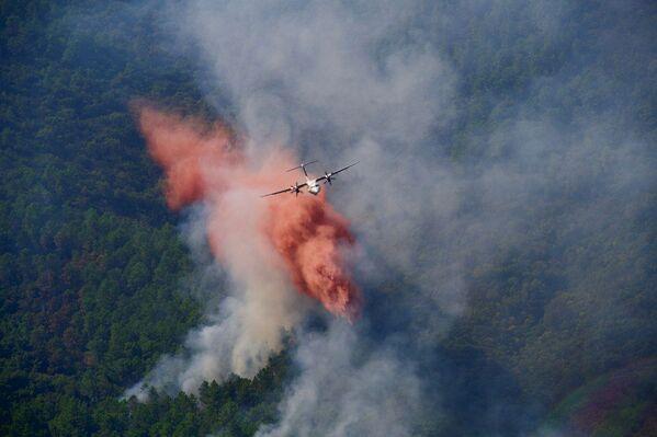 Самолет тушит лесные пожары во французском департаменте Вар  - Sputnik Абхазия