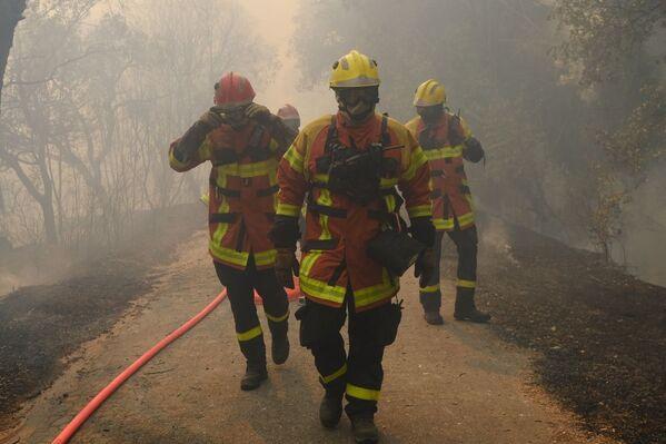 Пожарные тушат лесной пожар в регионе Вар, на юге Франции - Sputnik Абхазия