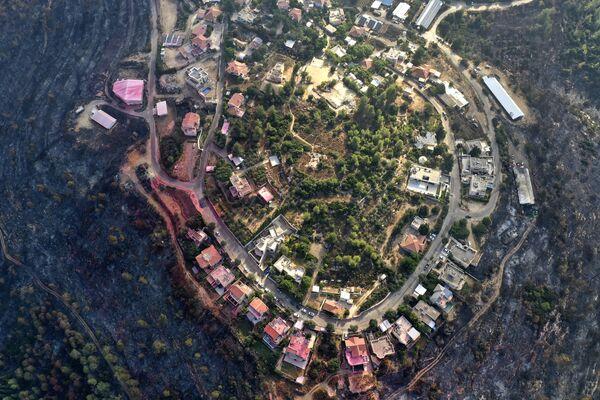 Cгоревшие леса вокруг поселка Гиват-Йеарим, Израиль. - Sputnik Абхазия