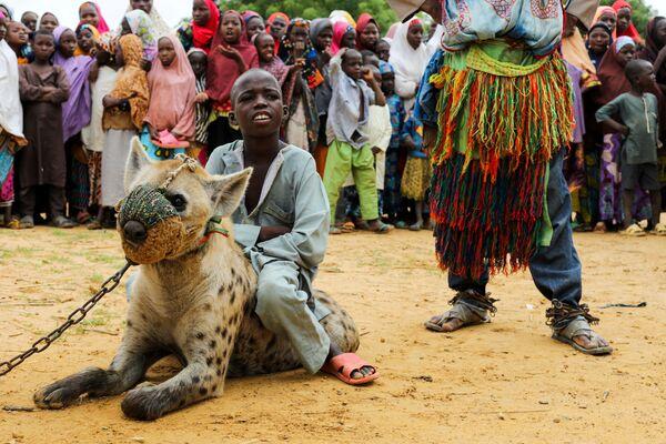 Мальчик сидит на гиене в штате Кано на севере Нигерии. - Sputnik Абхазия