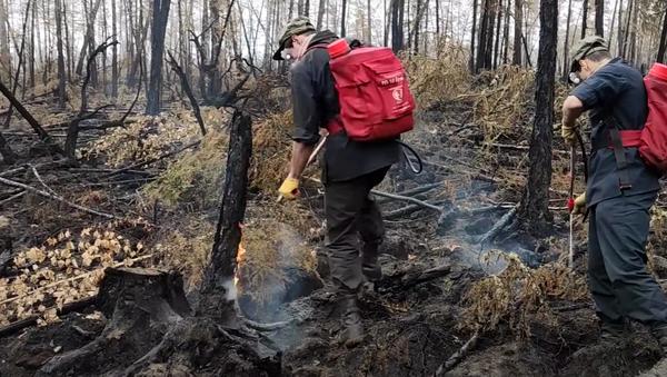 Сводный отряд ВВО ликвидирует лесные пожары в Якутии - Sputnik Абхазия