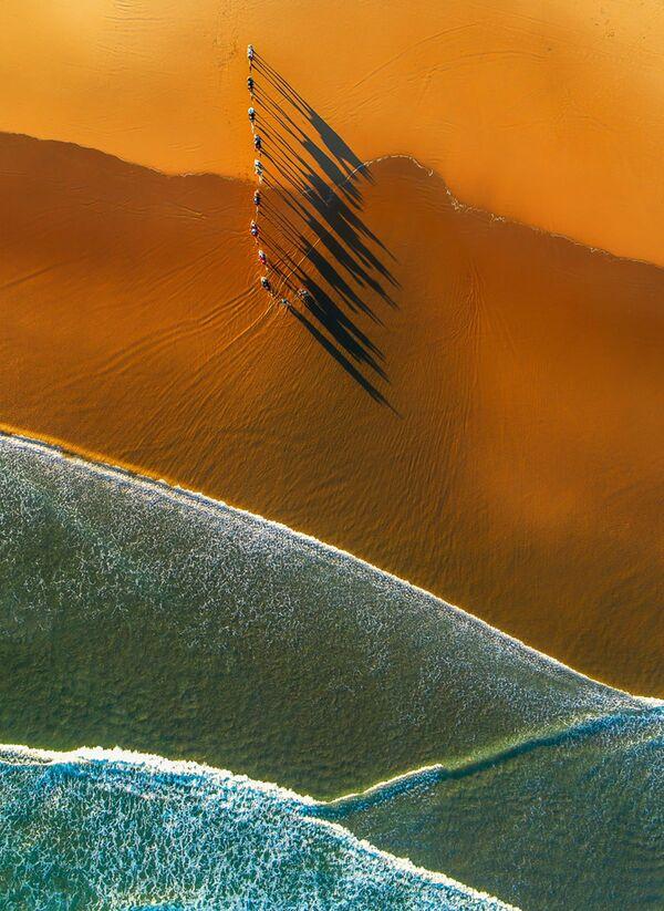 Снимок Camel Shadows at Sunset фотографа Jim Picôt, высоко оцененный в категории Nature в конкурсе Drone Awards 2021 - Sputnik Абхазия