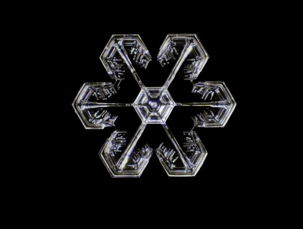 Снимок Snowflake американского фотографа Dr. Joern N. Hopke, занявший 14-е место в фотоконкурсе Nikon Small World 2021 - Sputnik Абхазия