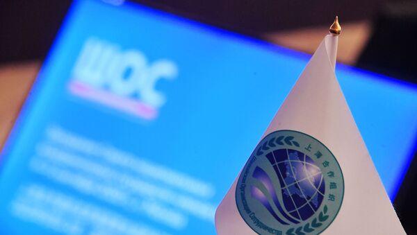 Заседание Совета национальных координаторов государств ШОС. День первый - Sputnik Абхазия