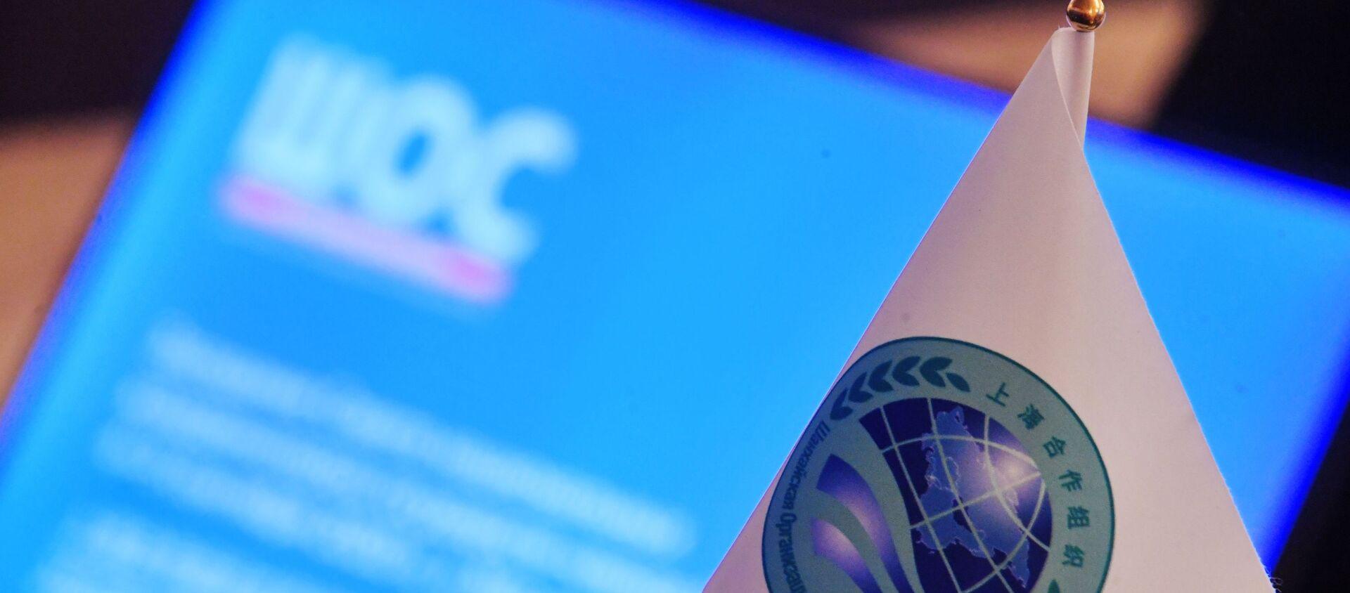 Заседание Совета национальных координаторов государств ШОС. День первый - Sputnik Абхазия, 1920, 17.09.2021