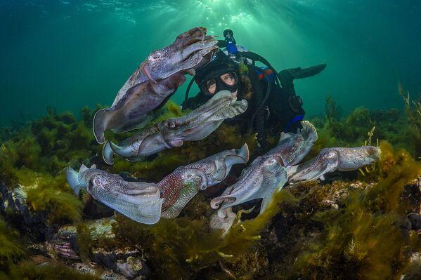 Снимок фотографа Scott Portelli, высоко оцененный в категории Exploration Photographer of the Year конкурса Ocean Photographer of the Year 2021 - Sputnik Абхазия