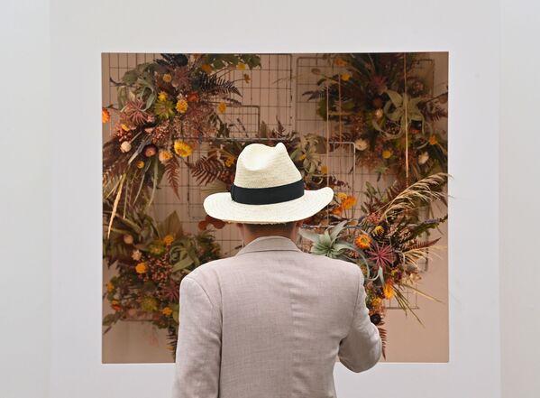 Цветочная инсталляция на выставке цветов RHS Chelsea Flower Show в Лондоне. - Sputnik Абхазия