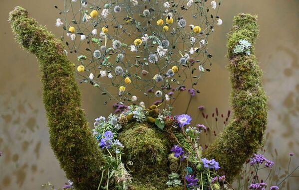 Деталь цветочной инсталляции на выставке цветов RHS Chelsea Flower Show в Лондоне. - Sputnik Абхазия