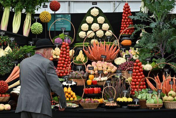 Мужчина смотрит на выставку овощей во время цветочной выставки RHS Chelsea в Лондоне. - Sputnik Абхазия