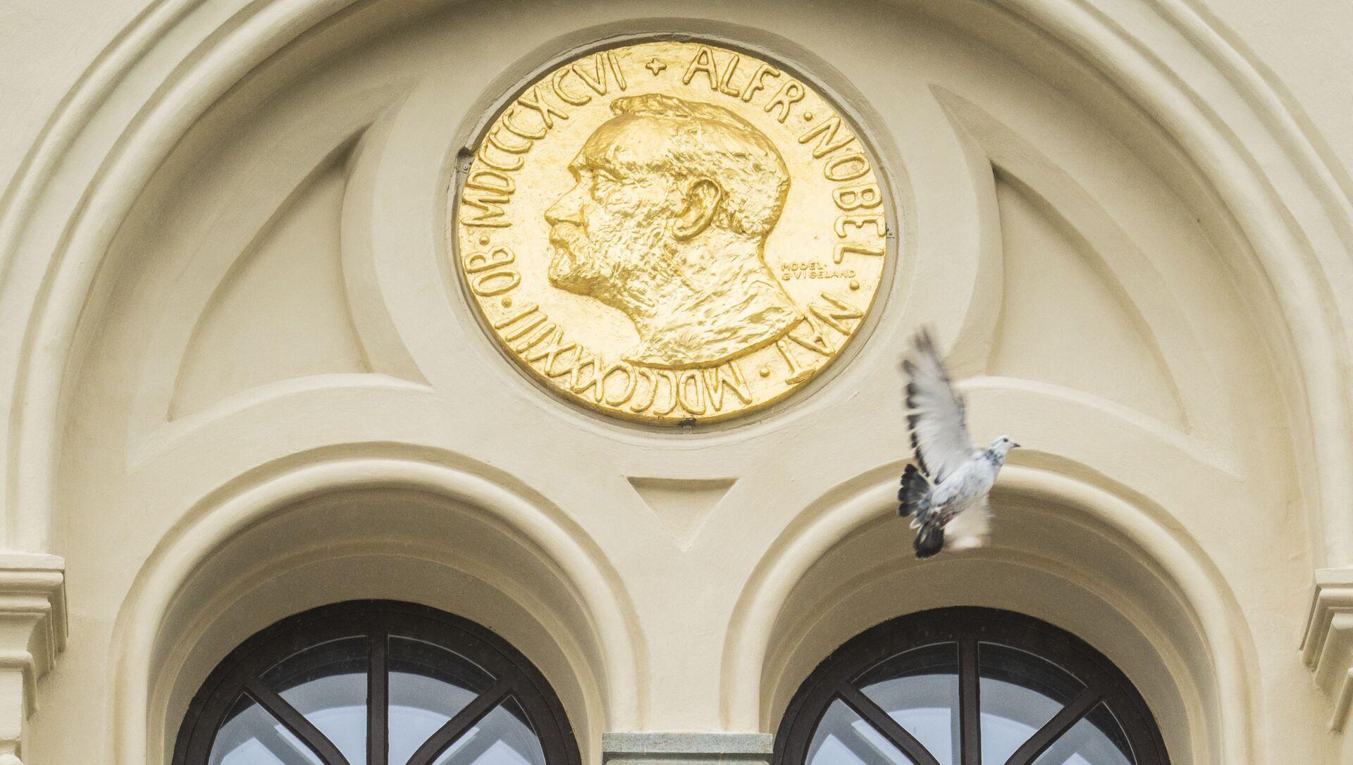 Голубь мира пролетает мимо барельефа Альфреда Нобеля после того, как он был выпущен перед Нобелевским центром мира в Осло - Sputnik Абхазия, 1920, 08.10.2021