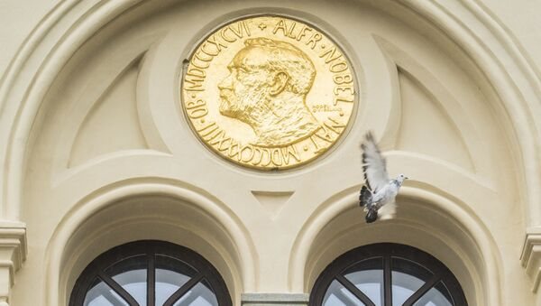 Голубь мира пролетает мимо барельефа Альфреда Нобеля после того, как он был выпущен перед Нобелевским центром мира в Осло - Sputnik Абхазия