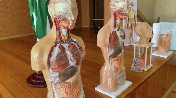 Сухумский офис Детского фонда ООН передал Министерству здравоохранения наглядные пособия для Сухумского медицинского колледжа и Гагрского медицинского училища. - Sputnik Аҧсны