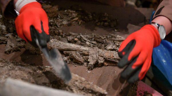 Ученые вскрыли свинцовый саркофаг, найденный в городище Гюэнос - Sputnik Абхазия