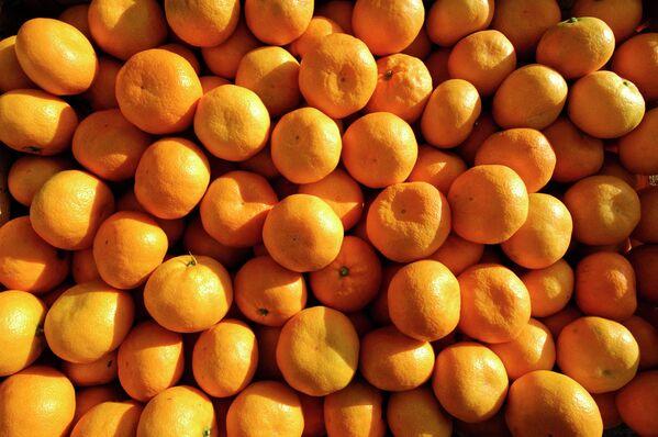 Урожай мандарин - Sputnik Абхазия