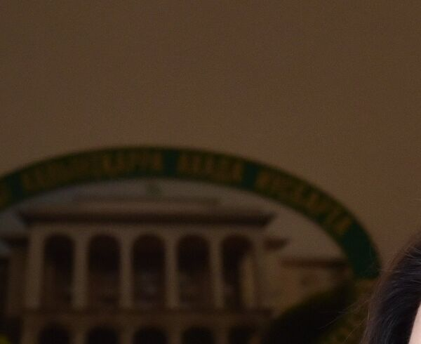 Народная артистка Абхазии и России Хибла Гердзмава. Фото с места события. - Sputnik Абхазия