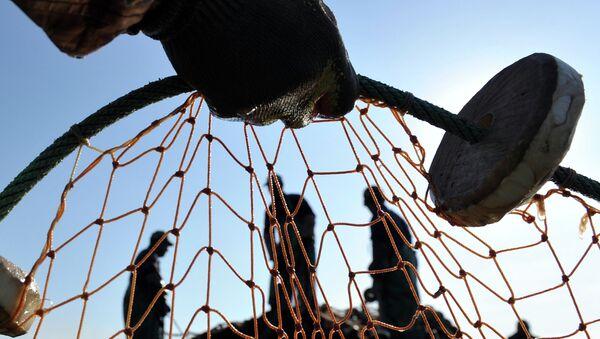 Лов рыбы. Архивное фото. - Sputnik Абхазия