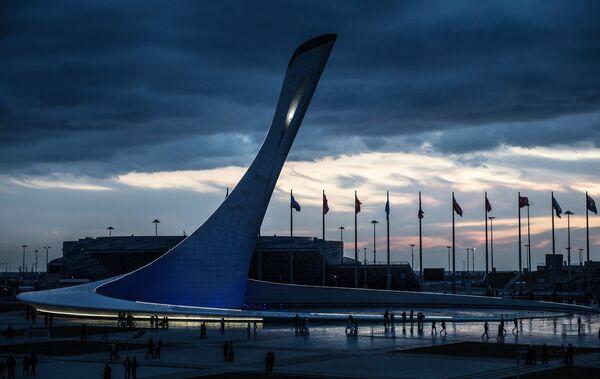 Сочинская Чаша Олимпийского огня. Архивное фото. - Sputnik Абхазия